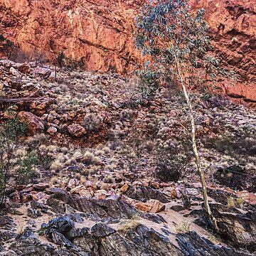 Simpson's Gap, Alice Springs by rozmcq