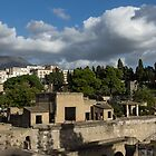 Ancient Herculaneum Ruins - Green and Sunny Afternoon From Above by Georgia Mizuleva