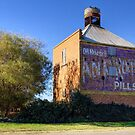 The Old Chicory Kiln, Bacchus Marsh, Victoria by Christine Smith