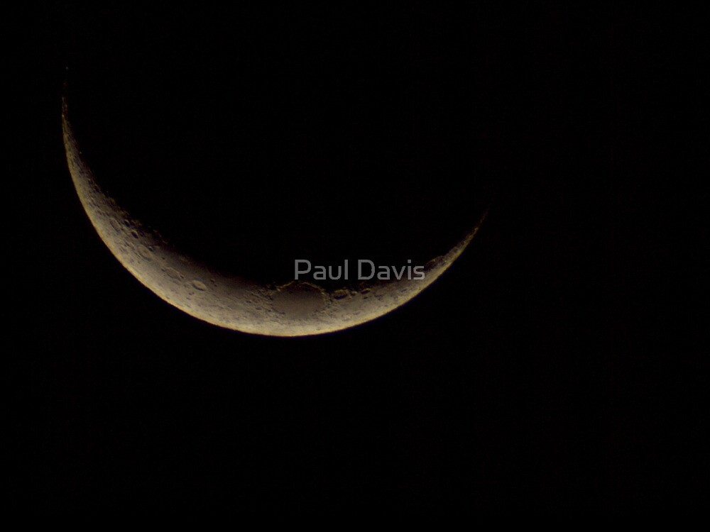 New Moon  by Paul Davis