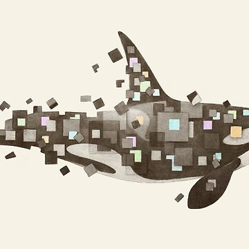 Fractured Killer Whale  by TerryFan