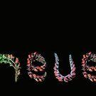 Echeveria by Gabrielle  Lees