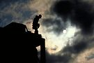 Carpenter at Sunrise - Minnesota by Kent DuFault
