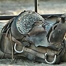 Retired Saddle by Susanne Correa