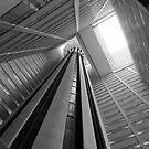 Atrium by John Dalkin