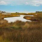 Cape Hatteras by Kathy Weaver