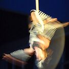 Aerialist 2 by Steven Carpinter