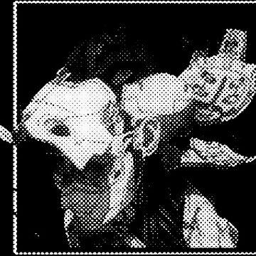Ghost in the Shell head halftone by zerplin
