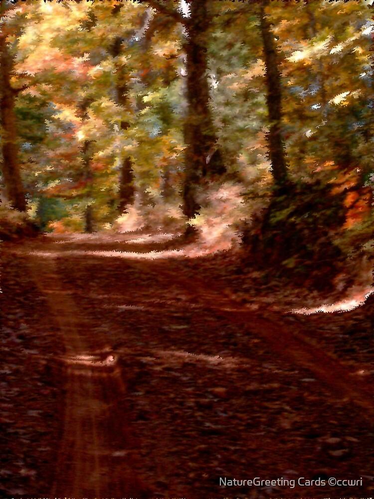 Autumn Impressions 3 by NatureGreeting Cards ©ccwri