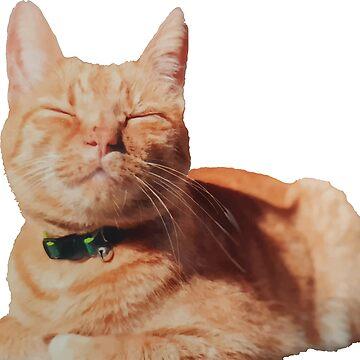 Smug Cat is Smug by RedMouseGames