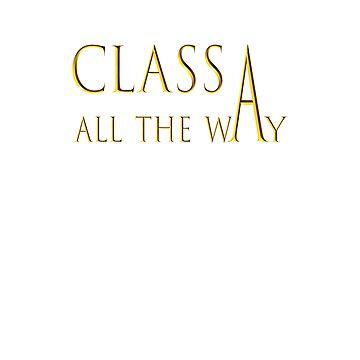 For the Classy RVer; Class A by originalrvline