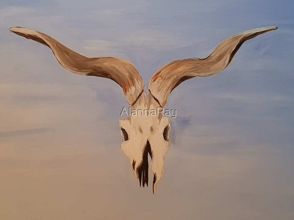Southwestern Deer Skull  by AlannaRay