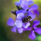 Bee by Yana Art