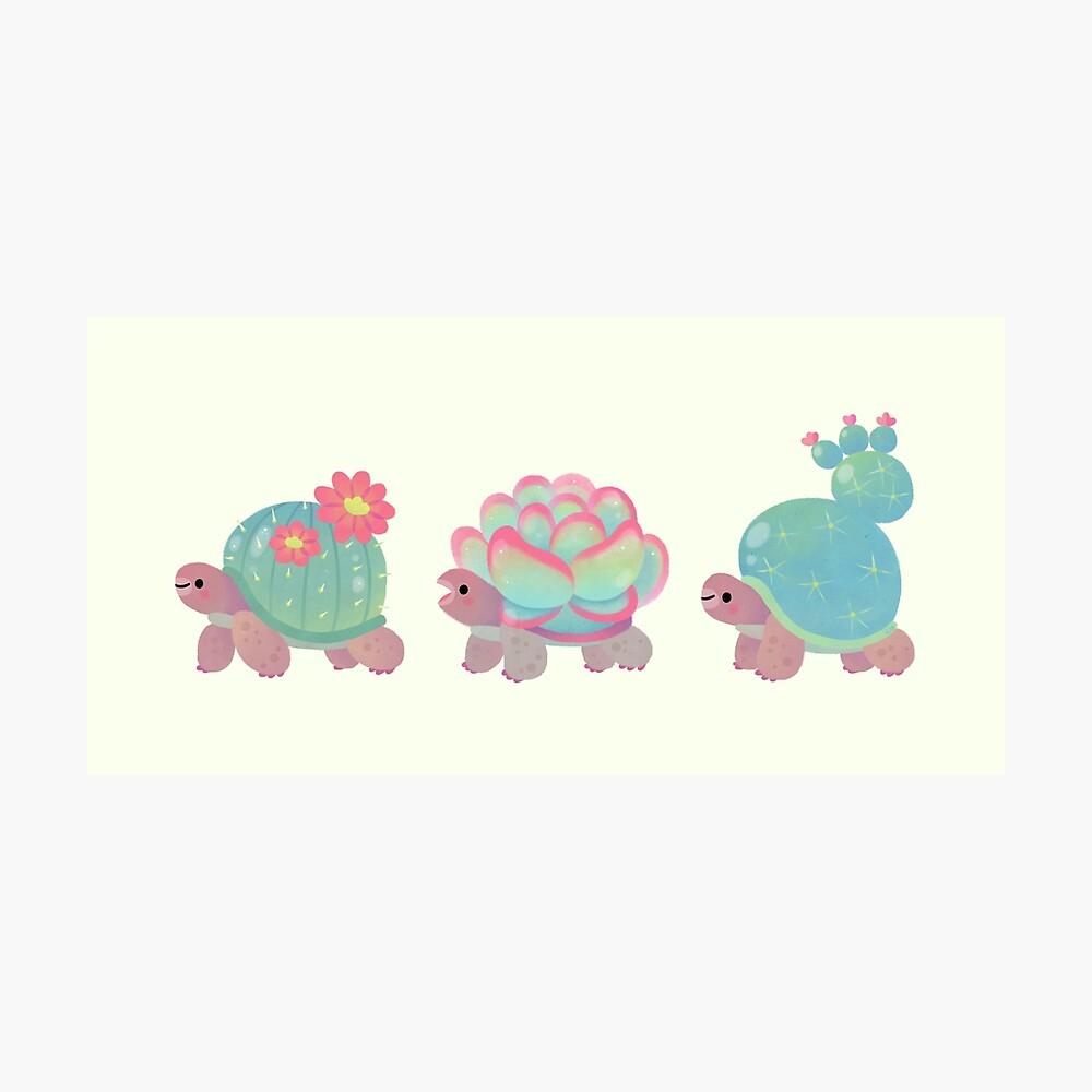 Cactus tortoise Photographic Print
