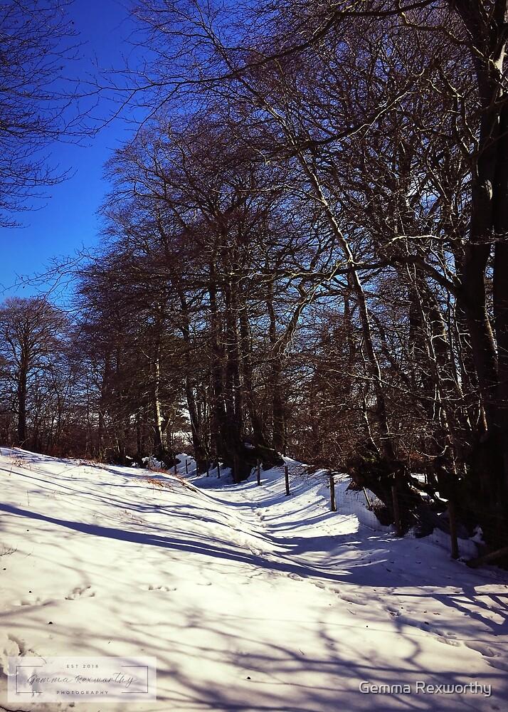 Winter wonderland  by Gemma Rexworthy