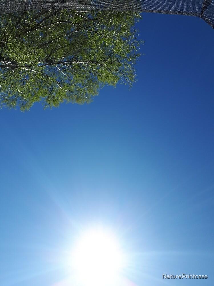 Sky and sun together by NaturePrintcess
