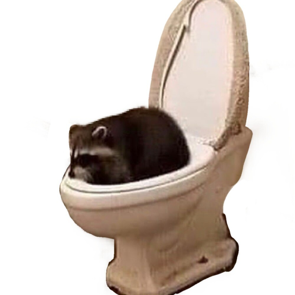 Toilet Raccoon by DommyD21