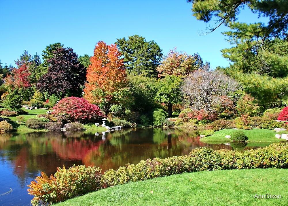 An Autumn Garden in Maine USA by AnnDixon