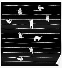 Sloth Stripe Poster