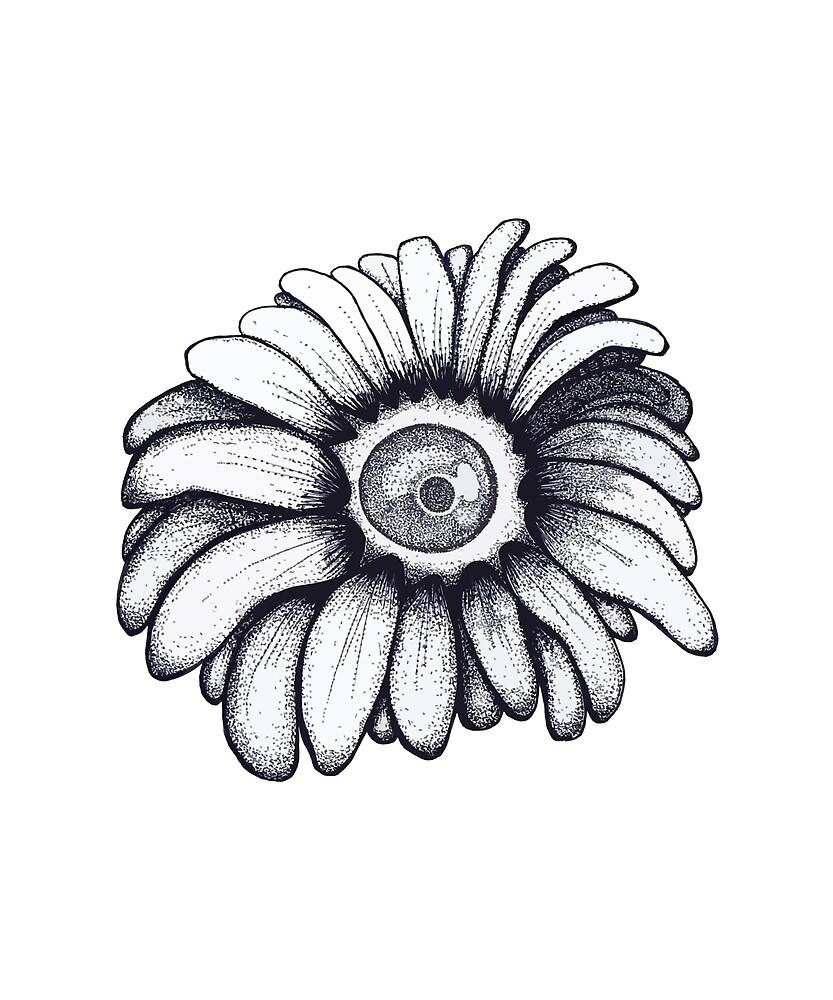 Sunflower solo by Kosmos-Origins