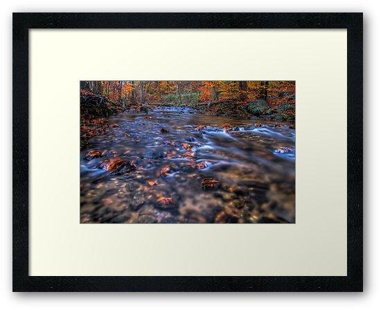 Creek In Autumn Season by Michael Mill
