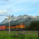 Train in Montana by Susan Russell