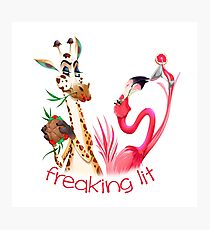 Party Time Freaking Lit Giraffe and Flamingo  Photographic Print