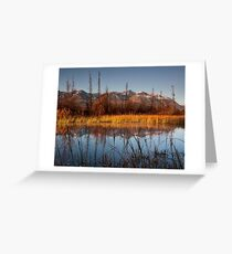 Dezadeash River, Yukon  Greeting Card