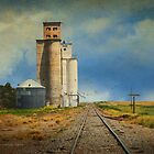 grain elevator out in kansas by R Christopher  Vest