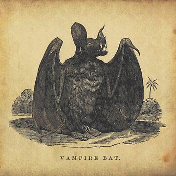 Vampire Bat by jeastphoto
