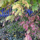 Autumn in The Blue Fenced Garden by TrendleEllwood