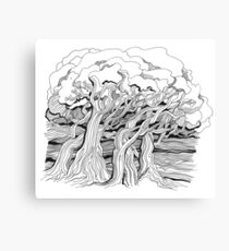 Trees by the river Canvas Print
