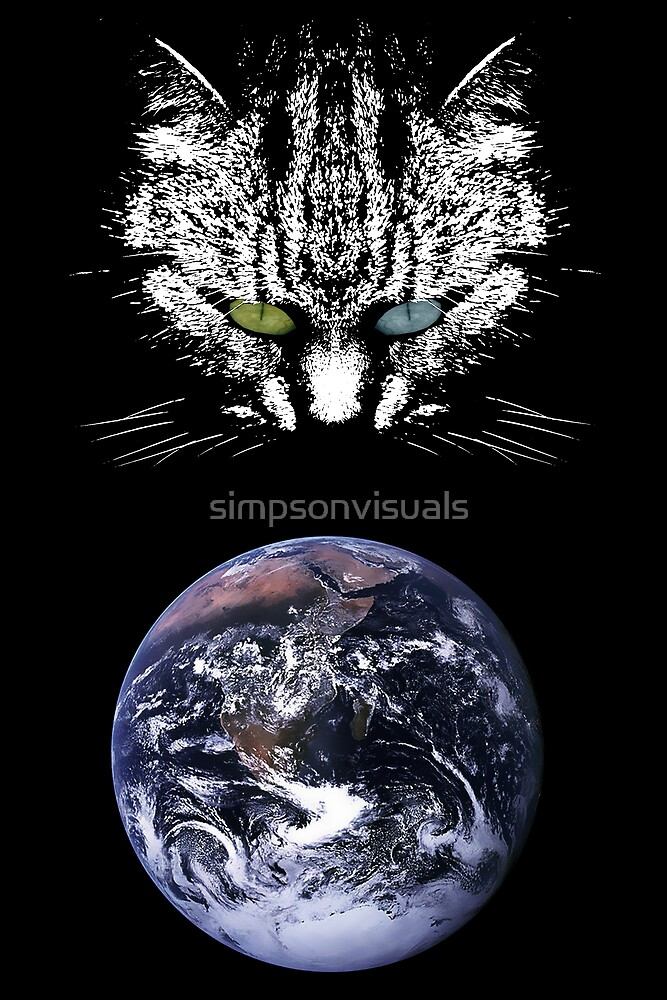 The Tabby Cat - Master of the Universe by simpsonvisuals