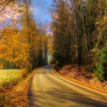 The Way To Go by wekegene