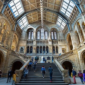 Natural History Museum by baneling