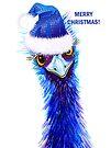 Christmas Emu by Linda Callaghan