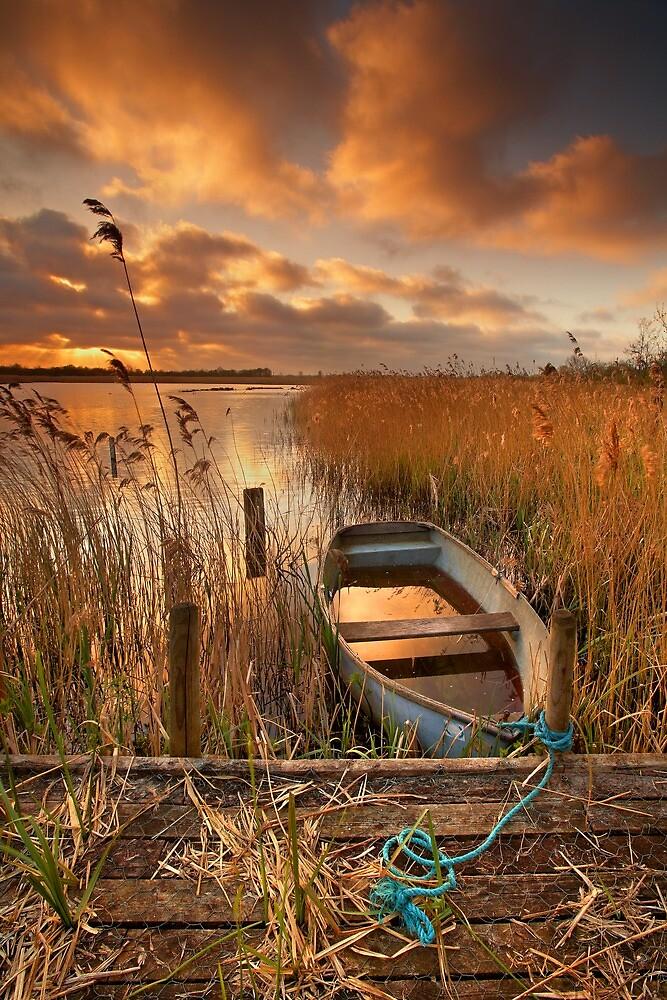 Old Boat, Strumpshaw Fen, Norfolk by Ian Flindt