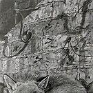 Sleeping Mr Fox by Robert David Gellion