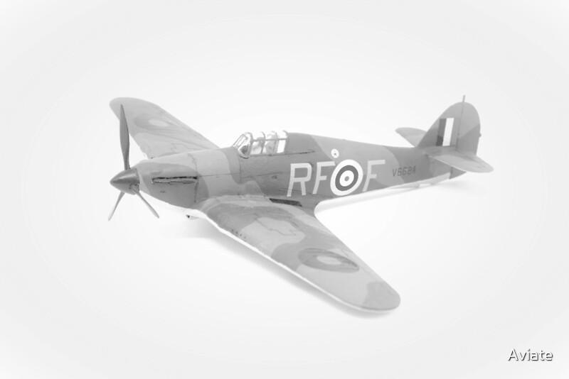 Hawker Hurricane Mk 1c of 303 squadron