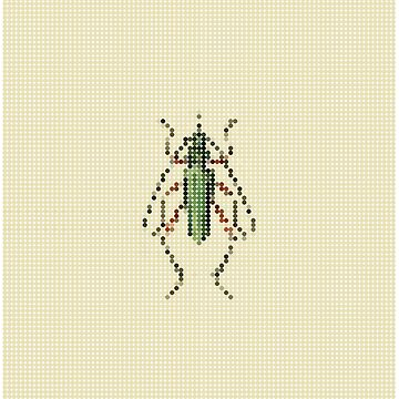 Green Beetle by marcorecuero