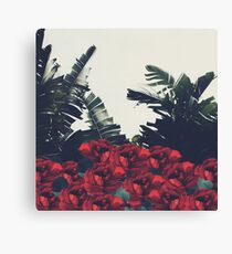 Red-Passion of Nature Canvas Print