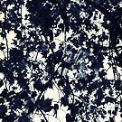 Fade to Grey by angelo cerantola