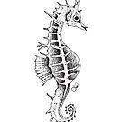 Seahorse by Megan Grant