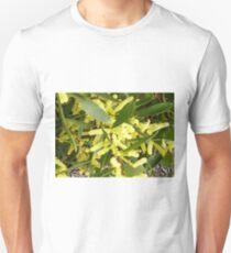 Acacia Longifolia (Sydney Golden Wattle)  T-Shirt