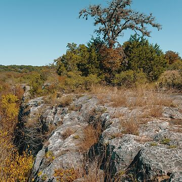 Hiking at Guadalupe River State Park by cheesim