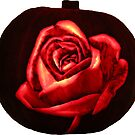 A Moti Pumpkin Rose by MotiBlack