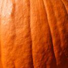 Pumpkin by Logan McCarthy