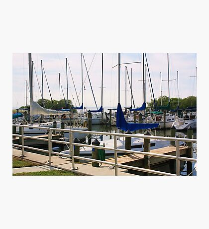 Safety Harbor Marina  Photographic Print