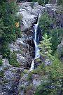 High Falls Fall by John Schneider