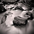 Cry me a River by Kym Howard